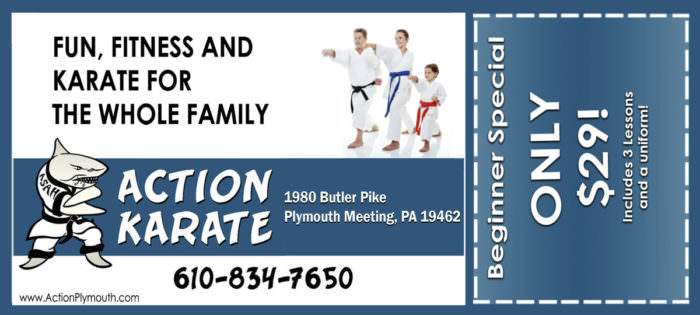 Karate Class Coupon